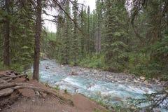Johnston Canyon, Alberta imagen de archivo libre de regalías