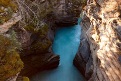 Johnston Canyon  in Banff National Park Stock Image