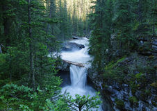 Johnston canyon, Banff national park Stock Photography