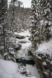 Johnston Canyon på den frostiga och snöig dagen, pilbågeflod, alberta Kanada fotografering för bildbyråer