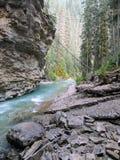 Johnston Canyon Trail, ober und niedriger Fälle, Nationalpark Banffs, Kanadier Rocky Mountains, Alberta, Kanada stockbild