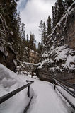 Johnston Canyon Trail Winter, Banff Royalty-vrije Stock Afbeeldingen