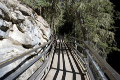 Johnston Canyon Walkway Royalty-vrije Stock Afbeeldingen