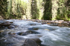 Johnston Canyon Waterfalls Royalty Free Stock Image