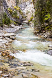 Johnston Creek, Banff National Park, Alberta Stock Photos