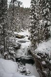 Johnston Canyon on frosty and snowy day, bow river, alberta Canada. Johnston Creek originates north of Castle Mountain in a glacial valley southwest of Badger stock image