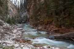 Johnston jar w Banff parku narodowym - Kanada Zdjęcie Royalty Free