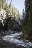 Johnston jaru Banff park narodowy Alberta Kanada Obrazy Royalty Free