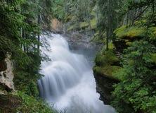 Johnston kanjon, Banff nationalpark Royaltyfri Foto