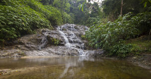 Johor National Park Waterfall,Malaysia Royalty Free Stock Images
