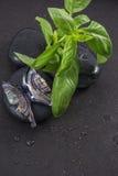 Joia de vidro como a borboleta nas pedras do preto com manjericão Imagens de Stock Royalty Free