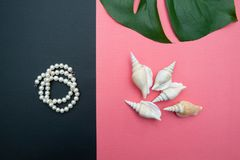Joia do tema e joias das pérolas, da composição bonita das pérolas e dos escudos, fundo coral da cor, imagens de stock royalty free