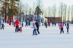 Joie d'hiver patinage Photos stock