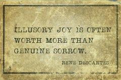 Joie illusoire Descartes image stock