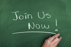 Join us now. Note on green blackboard Royalty Free Stock Images