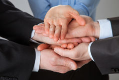 Joined hands of business people Stock Image