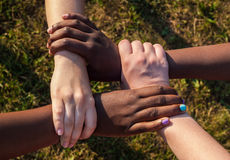 Joined hands of multiracial friends in cooperation as team Stock Photography