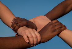 Joined hands of multiracial friends in cooperation as team Royalty Free Stock Image