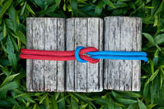 Joined ropes on a natural background. Joined climbing ropes on a natural background Royalty Free Stock Photo