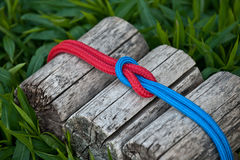 Joined ropes on a natural background. Joined climbing ropes on a natural background Royalty Free Stock Image
