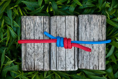 Joined ropes on a natural background. Joined climbing ropes on a natural background Stock Photos
