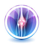 Joint anatomy Sign Stock Photography