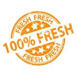Joint de tampon en caoutchouc - 100% frais illustration libre de droits