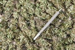 Joint on dry cannabis buds. Spliff - cannabis joint on dry cannabis buds background stock photography