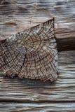 Joint en bois entaillé montrant les faisceaux taillés de grain d'extrémité à disposition photo libre de droits
