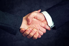 Joint enterprise handshake over business agreement. Male and female businesspeople shaking hands after forming a strategic partnership stock image