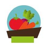 Joint frais de produit à base de légumes Images stock