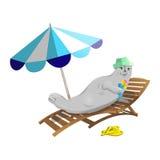 Joint se reposant sur la plage Image stock