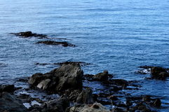 Joints sur des roches dans Kaikoura, Nouvelle-Zélande Images libres de droits