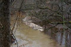 Jointure de rivières Image libre de droits