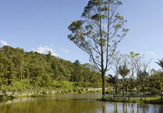 Joinville, Brésil image libre de droits