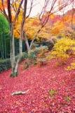 Jojakkoji Temple in autumn at Kyoto Stock Image