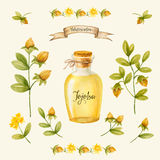 jojoba Photos stock