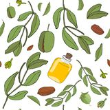 Jojoba de calibre illustration libre de droits