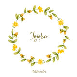 Jojoba Stock Photo