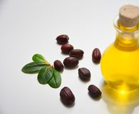 Jojoba oil on white background. Jojoba oil in a glass bottle and jojoba seeds near on a white background and brown spoon, close up royalty free stock images