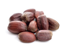 Jojoba (Simmondsia chinensis) seeds. Royalty Free Stock Photography