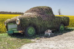 Joke. Funny decorated car near a rural road in Transilvania. The old dog just arrived before my shot Royalty Free Stock Photos