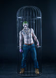 Joker from a Suicide Squad comics on a black background. Professional make-up.  Stock Photography