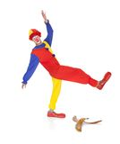 Joker About To Fall. On Banana Skin Over White Background Royalty Free Stock Image