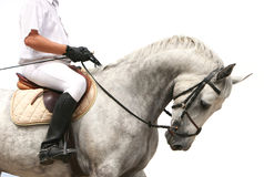 Jokey on dressage horse Royalty Free Stock Images