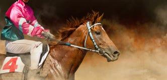 Jokey på en fullblods- häst kör på färgbakgrund Arkivfoto