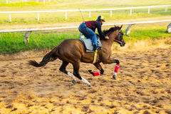 Jokey ride horse in the sport Stock Photography
