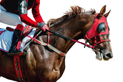 Jokey on a thoroughbred horse in red mask runs isolated on white Royalty Free Stock Photo