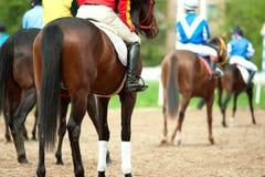 Jokeys on a horses before start Stock Photos