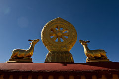 Jokhang tempel Lhasa Tibet Royaltyfri Bild